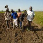 ウガンダ 種まきの様子をお伝えします。